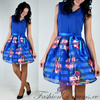 kleitsinine
